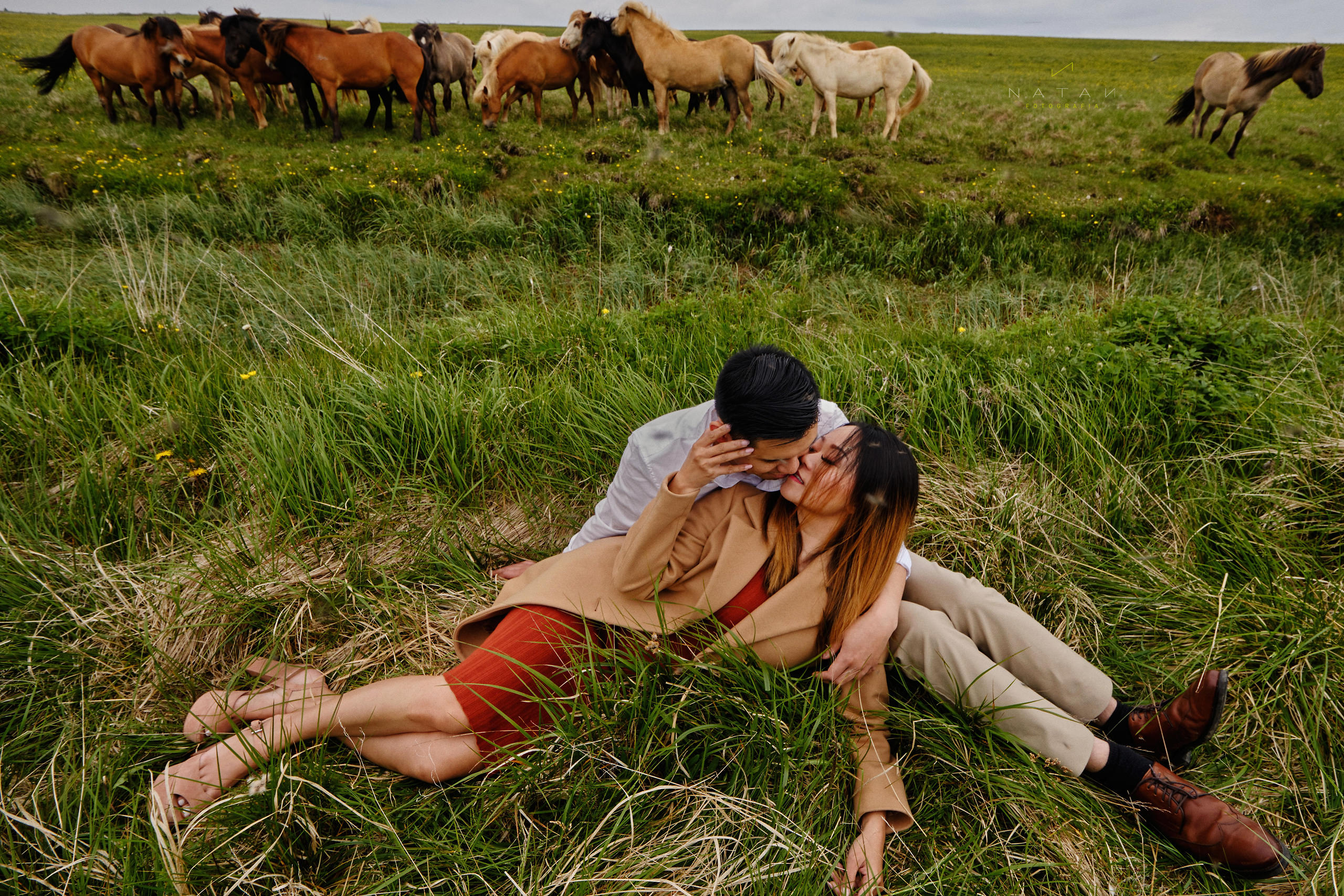 Elopement Iceland Photographer, with horses